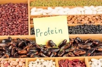Πόση πρωτεΐνη χρειάζονται οι αθλητές αντοχής; (Μέρος 2ο)