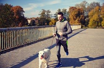 Τρέξιμο με το σκύλο μου: Από τους καλύτερους running partners του ανθρώπου!