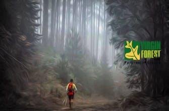 Δοκιμάζουν τις δυνάμεις τους οι μετέχοντες στο Virgin Forest Trail 2021